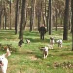 Hundehof MeikEva
