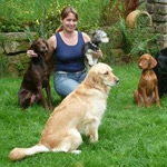 Mobile Hundeschule + Hundepension Anja Leimeister
