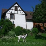 Hundeferienparadies - familiäre Hundepension