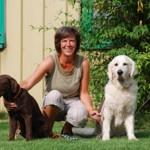Hundekindergarten Siek