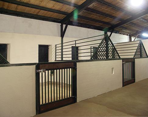 pferdeparadies freienhagen die pferdepension. Black Bedroom Furniture Sets. Home Design Ideas